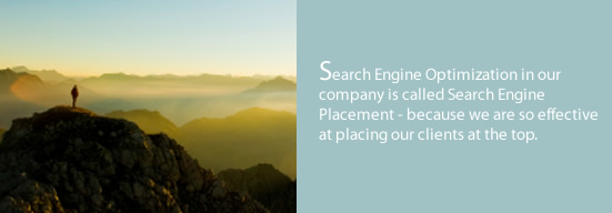 Search engine placement services